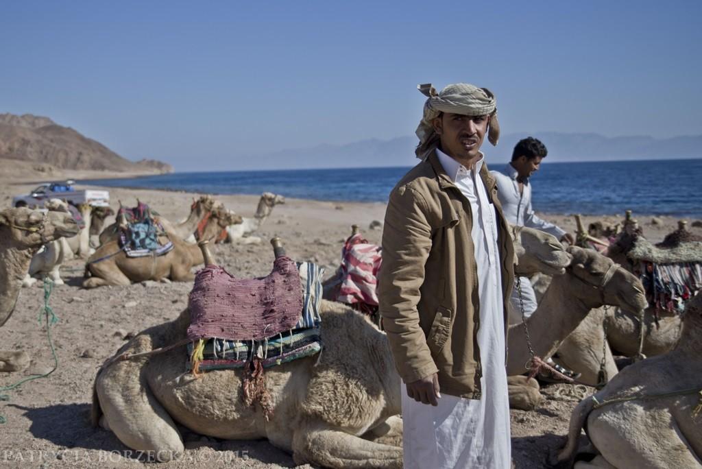 Po przejechaniu pustyni docieramy do Dahab. To natomiast typowo turystyczne miejsce. Przejażdżki na wielbłądach to jedna z najpopularniejszych atrakcji.