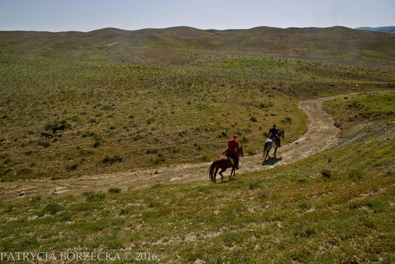 PatrycjaBorzeckaPhoto-Iran-April2016-11